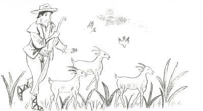 El destino de un pastor